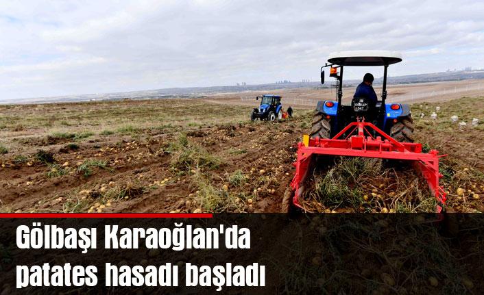Gölbaşı Karaoğlan'da patates hasadı başladı