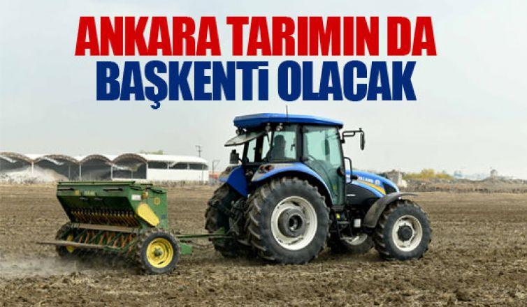 Ankara Büyükşehir Belediyesi'nden kırsal kalkınma hamleleri!