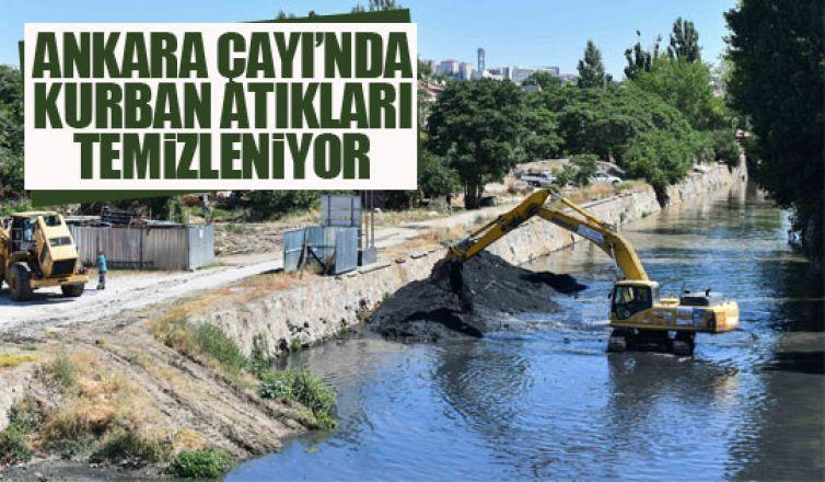 Ankara Çayı'ndaki kurban atıkları temizleniyor