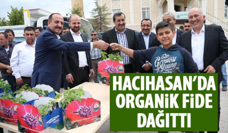 Başkan Duruay organik fide dağıtı