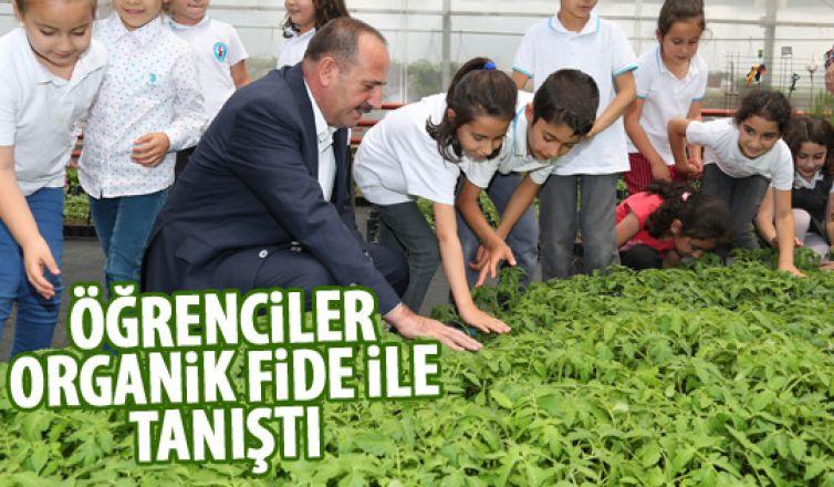 Başkan Duruay organik fide dağıttı
