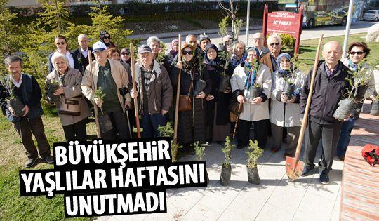 Büyükşehir Yaşlılar Haftasını kutladı
