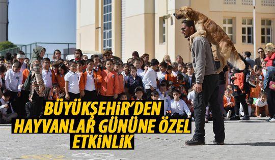 Büyükşehir'den Hayvanları Koruma Günü etkinliği