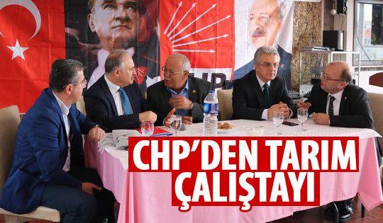 CHP Gölbaşı İlçe Başkanlığı Tarım ve Çiftlik Çalıştayı düzenledi