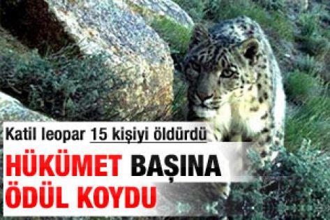 Hükümet leoparın başına ödül koydu