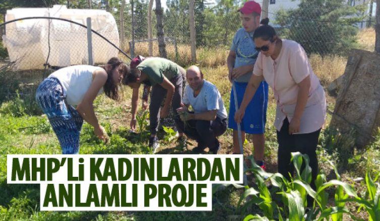 MHP'lş kadınlar organik tohum projesini faaliyete geçirdiler