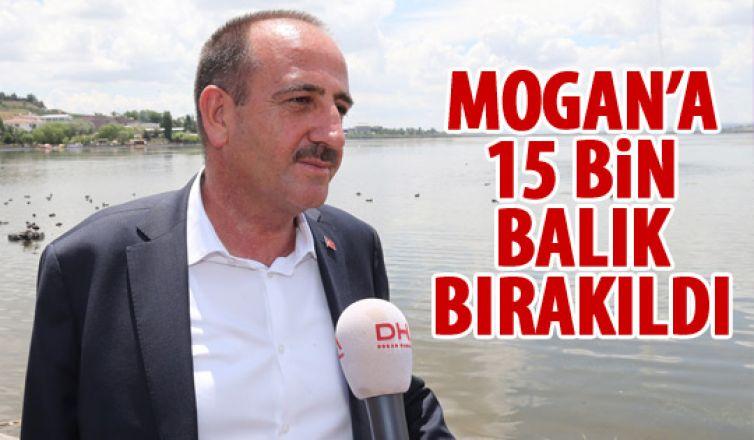 Mogan Gölü'ne balık bırakıldı
