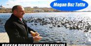 Başkan Duruay Kuşları Besledi