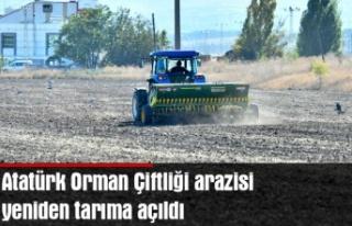 Atatürk Orman Çiftliği arazisi yeniden tarıma...