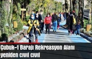 Çubuk-1 Barajı Rekreasyon Alanı yeniden cıvıl...