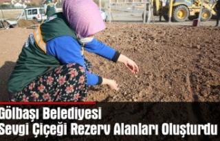 Gölbaşı Belediyesi Sevgi Çiçeği Rezerv Alanları...
