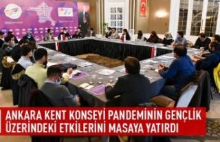Ankara kent konseyi pandeminin gençlik üzerindeki...