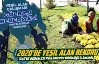 2020'de yeşil alan rekoru