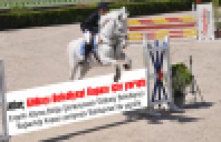Atlar, Gölbaşı Belediyesi Kupası için yarıştı