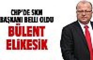 CHP SKM Başkanlığına Elikesik atandı