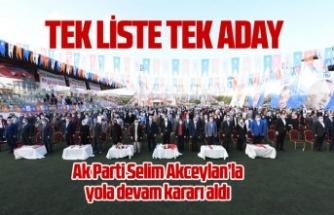 Ak Parti Selim Akceylan ile yola devam dedi