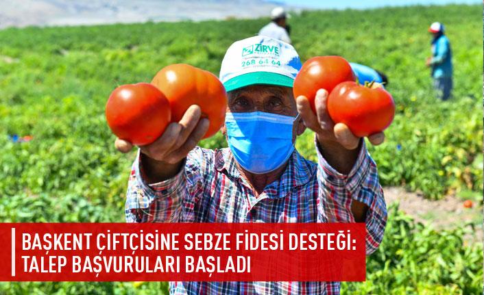 Başkent çiftçisine sebze fidesi desteği