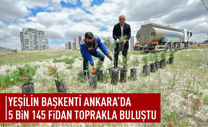 Ankara'da 5 bin 145 fiden toprakla buluştu