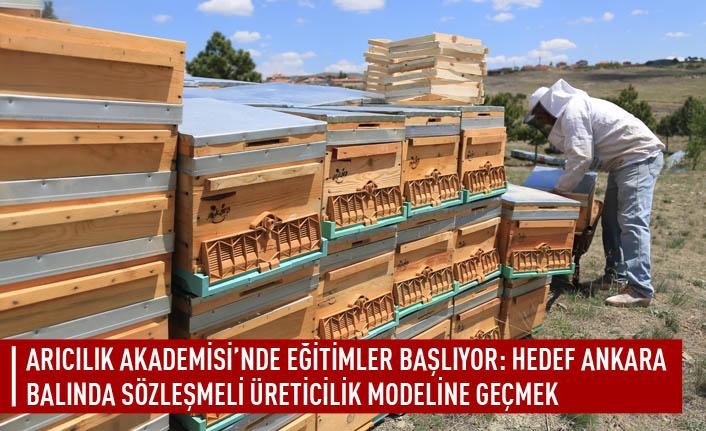 Arıcılık akademisi'nde eğitimler başlıyor: hedef Ankara balında sözleşmeli üreticilik modeline geçmek