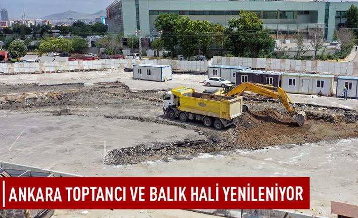 Ankara toptancı ve balık hali yenileniyor