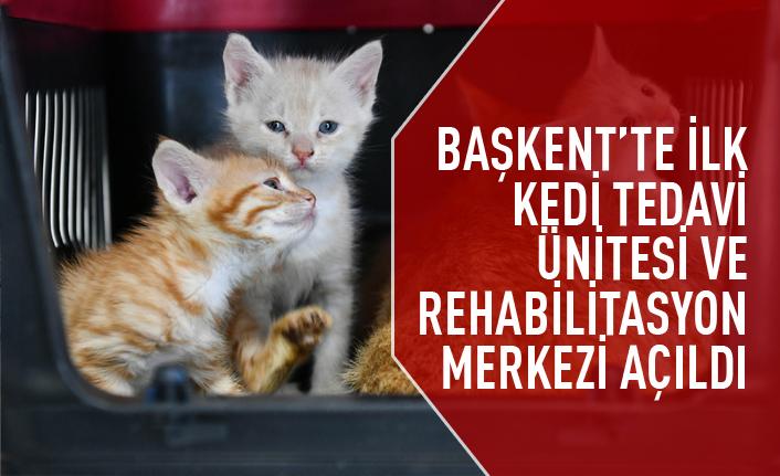 Sincan Kedi Tedavi Ünitesi ve Rehabilitasyon Merkezi açıldı