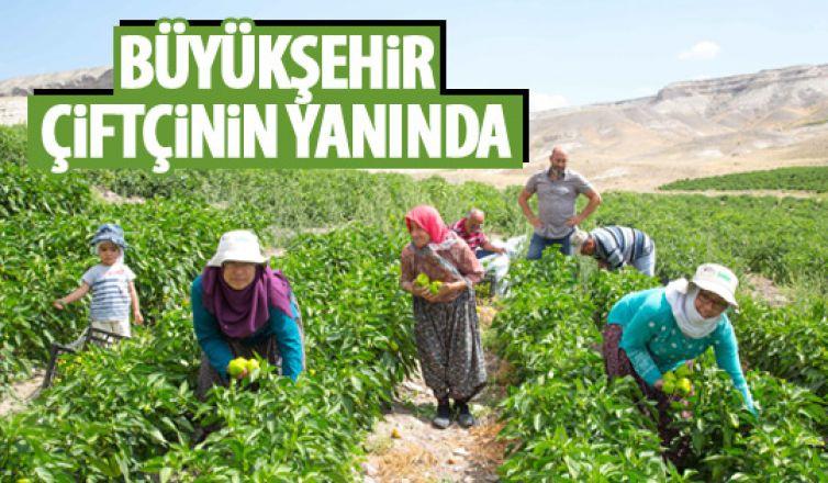 Büyükşehir'den çiftçiye destek