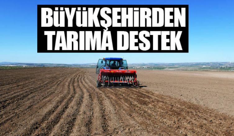 Büyükşehire ait arazilerde üretim başlıyor!