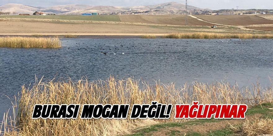 Mogan'a alternatif yeni göl!