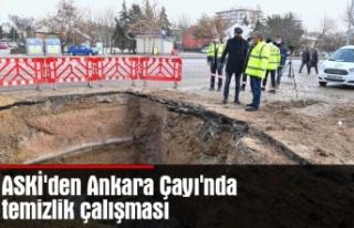 ASKİ'den Ankara Çayı'nda temizlik çalışması