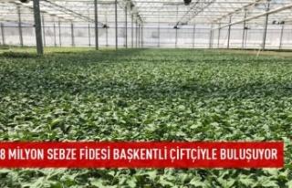 8 milyon sebze fidesi çiftçiyle buluşuyor