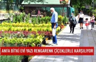 Ankara yazı rengarenk çiçeklerle karşılıyor
