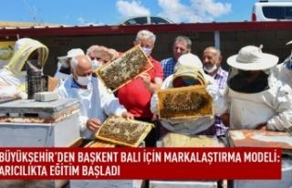 Ankara'da arıcılık eğitimleri başlandı