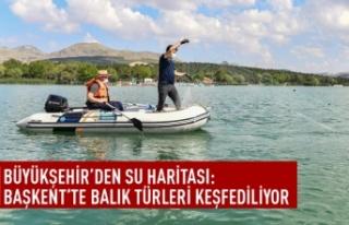 Başkent balık türleri keşfediliyor
