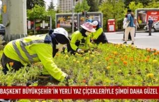 Başkent büyükşehir'in yerli yaz çiçekleriyle...