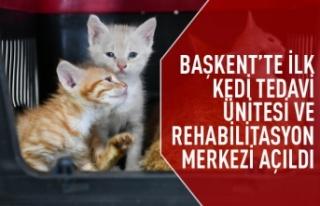 Sincan Kedi Tedavi Ünitesi ve Rehabilitasyon Merkezi...