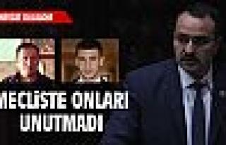 MHP'li Dulkadir Akyol ve Yaşar'ı unutmadı